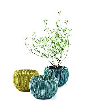 Curver Cozies Pots de Fleurs Aspect Tricot Trio Bleu Gris, Citron Et Océan, 15 x 15 x 11 cm