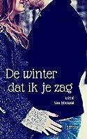 De winter dat ik je zag: (Verliefd en Verloren, #2)