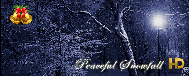 Peaceful Snowfall HD - 5
