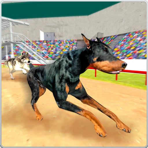 greyhound-k9-dog-race-sprint