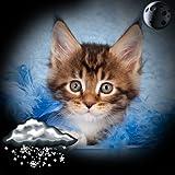 Gattini Orologio Widget Meteo