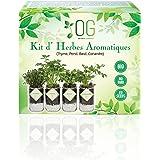 OG Kit Huerto Urbano - Kit Completo de 4 Plantas aromaticas (Tomillo, Cilantro, Albahaca y Perejil), 100% Semillas Bio, NO GM
