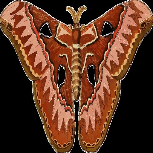 the-moth-podcast-listener
