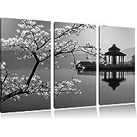 magnifique cerisier sur la mer japonaise noir / blanc sur l'image 120x80 sur toile 3-pièces de l'image de la toile…