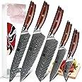 XINZUO 5 Pièces Ensemble de Couteaux de Cuisine, Haute Qualité Tranchants Japon Couteau de Cuisine Acier Damas Couteau de Che