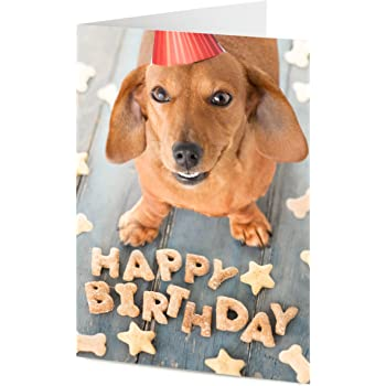Cute Dachshund Sausage Dog Arranges Doggy Treats To Say HAPPY BIRTHDAY Birthday Card