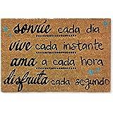 koko doormats felpudos Entrada casa Originales, Fibra de Coco y PVC, Felpudo Exterior SONRIE, Vive, AMA, 40x60x1.5 cm | Alfom