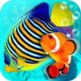 Saltwater Aquaria - Best Reviews Guide
