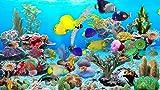 Aquarium bleu océan [Téléchargement]