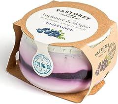Pastoret Yogur Ecológico con Arándanos, 135 g