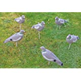 Refresh your old pigeon decoys 3D printed decoy covers 10x pigeon decoy socks