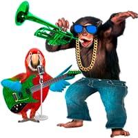 Talking Parrot vs Singing Monkey