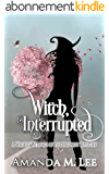 Witch, Interrupted (Wicked Witches of the Midwest Book 13) (English Edition)