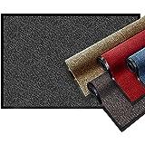 casa pura® Premium Fußmatte | Sauberlaufmatte für Eingangsbereiche | Fußabtreter mit Testnote 1,7 | Schmutzfangmatte in 8 Größen als Türvorleger innen und außen | anthrazit - grau | 90x150cm