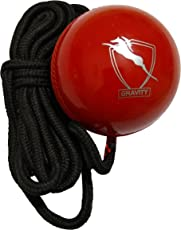 Gravity Hard Plastic Hanging Ball for Cricket