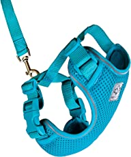 RC Pet Products 53804015 Primary Collection Adventure Kitty Harness, Medium