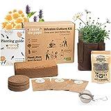 Kit Prêt à Pousser d'Herbes Aromatiques Plante à Infusion – Biologique Ecologique - Idée cadeau - Jardin Potager d'intérieur