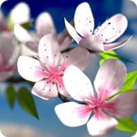 Spring Flowers en 3D Parallax HD
