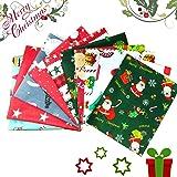 HIQE-FL 10 Pezzi Scampoli Stoffe,Patchwork Tessuti Natale,Tessuto Cotone,Patchwork Cotone Tessuto,Tessuto di Cotone Natale (A
