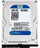 Western Digital WD2500AAKX Blue 250GB interne Festplatte (8,9 cm (3,5 Zoll), 7200rpm, SATA 6 Gb/s, 16MB Cache)
