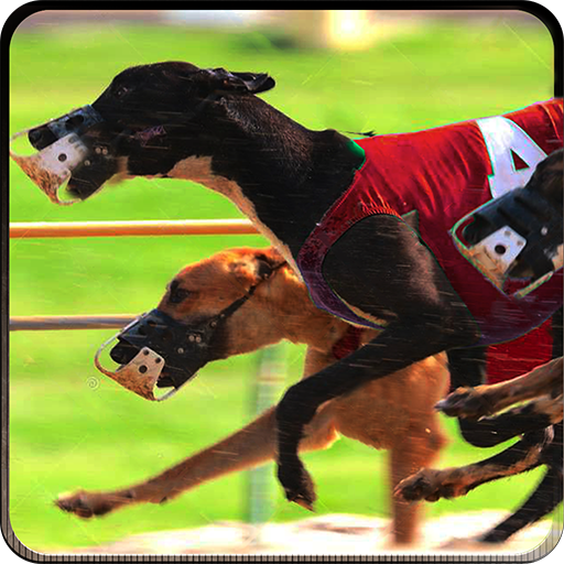 greyhound-dog-racing-3d