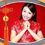 Chinesische Neujahr Foto-Collage