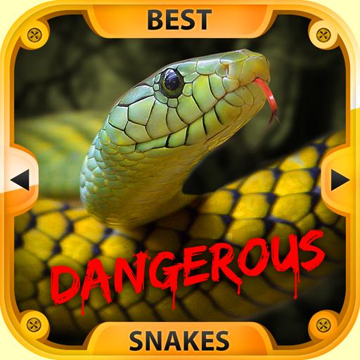 serpenti-pericolosi