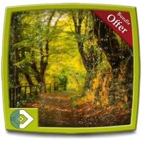 Green Rainy Land - FREE  Meditation to Reduce Stress and Anxiety - For Fire TV & Kindle Devices