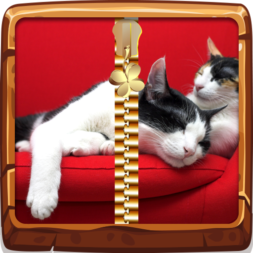 Katzen Zipper Lock Screen