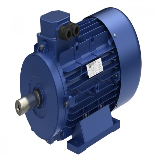 Electric Motor Inspection -