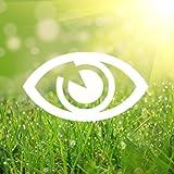 Vision Therapy: Eye Refresh
