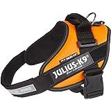 Julius-K9, Pettorina IDC per cani, Taglia: 0, UV arancione