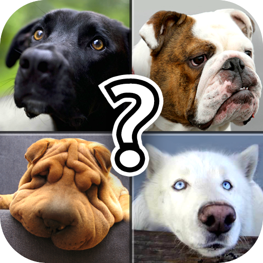dog-breed-quiz-free