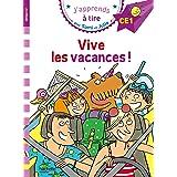 Sami et Julie CE1 Vive les vacances !: Niveau CE1
