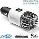 Car Air Purifier Ionizer - 12V Plug-in Ionic Anti-Microbial Car Deodorizer with Dual USB Charger - Smoke Smell, Pet and Food