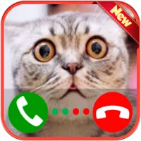 A Real Live Voice Call From A Cat - Free Fake Phone Call ID PRO 2018 - PRANK FOR KIDS!