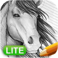How to Draw Horses: Lite Edition