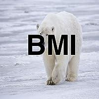 Polar BMI Lite