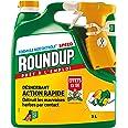 Roundup Désherbant Polyvalent Prêt à l'emploi, 3L