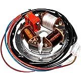 Ewr 8107 10 1 Elektronischer Wechselspannungsregler M Befestigungsbohrung 12v 42w Sr50 1 Sr80 1c Ce Auto