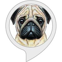 Pug Life: Fun App For All Pug Lovers
