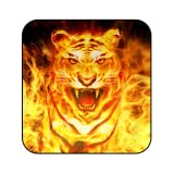 King Fire Lion Live Wallpaper