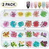 GOTONE 120 pezzi Vero Fiori Secchi Decorazione adesivi nail art 3D fiori conservati fai da te Suggerimenti Manicure, 80 pezzi