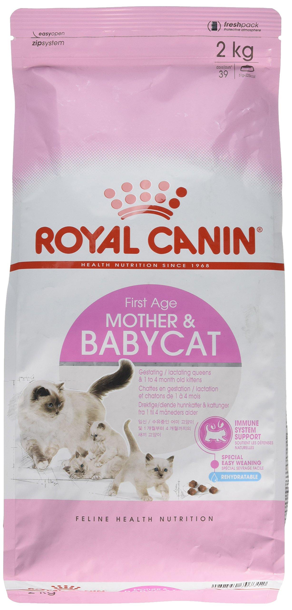 Royal Canin Mother and Babycat Gatte In Gestazione o Lattazione e Gattini da 1 a 4 Mesi di Et�