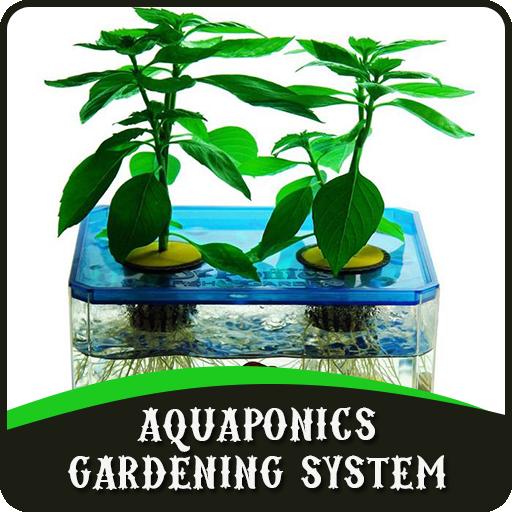 Aquaponics Gardening System - Hydroponic Gardening-systeme