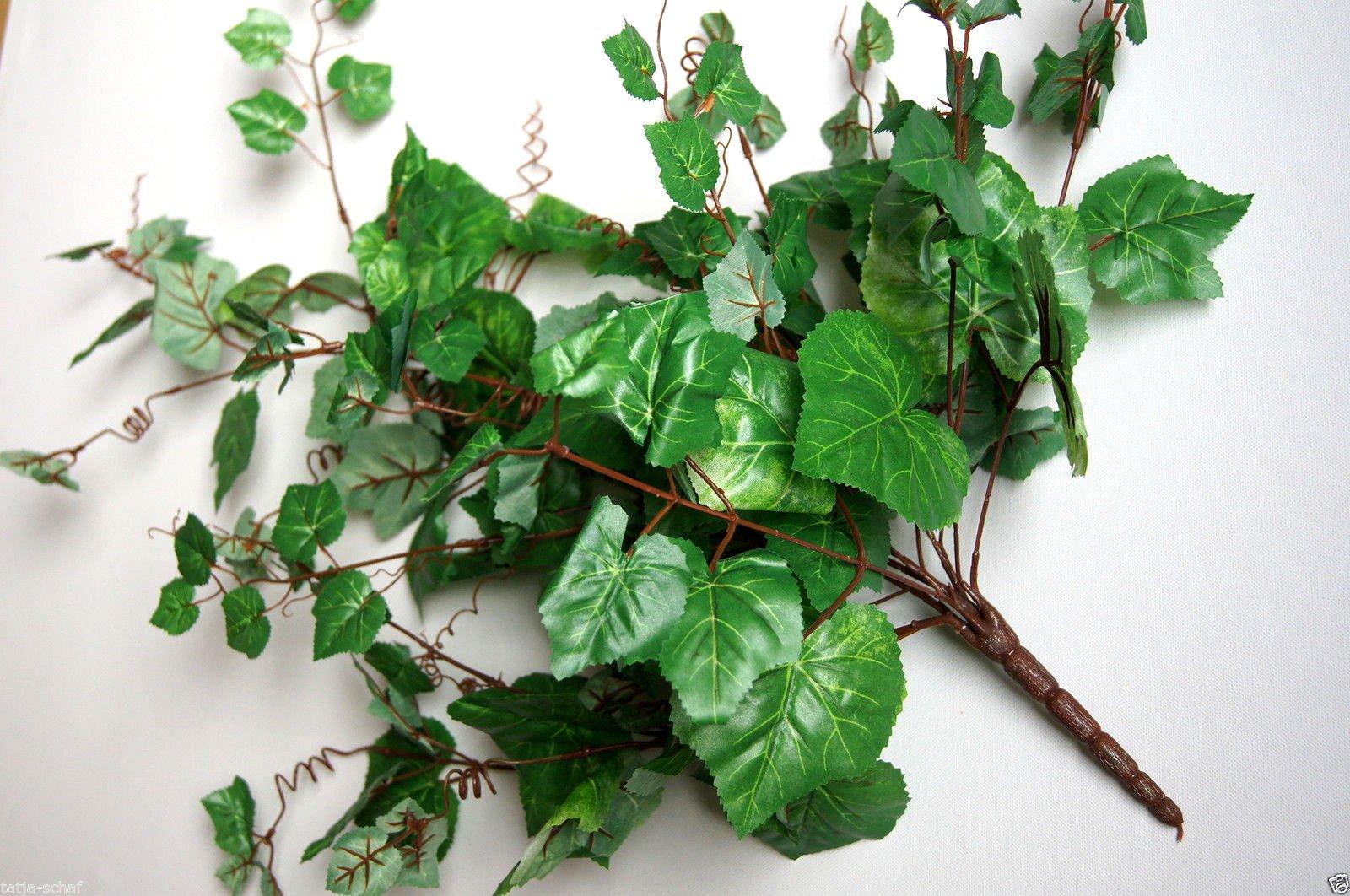 De hojas de hiedra Begonia artificial de hojas de hiedra y flores de las plantas de hojas de hiedra de animales…