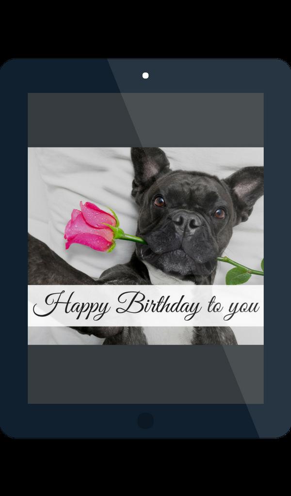Geburtstagsgrüße app Geburtstagswünsche Für