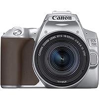 Canon EOS 250D Digitalkamera - mit Objektiv EF-S 18-55mm F4-5.6 IS STM (24, 1 Megapixel, 7, 7 cm (3 Zoll) Vari-Angle…