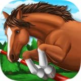 Horse World : Saut d'obstacles Free