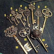 WellieSTR Vintage Skeleton Keys Charm Set Royal Key in Antique Bronze Pack of 12 Keys, 12 Different Style, No Repeat